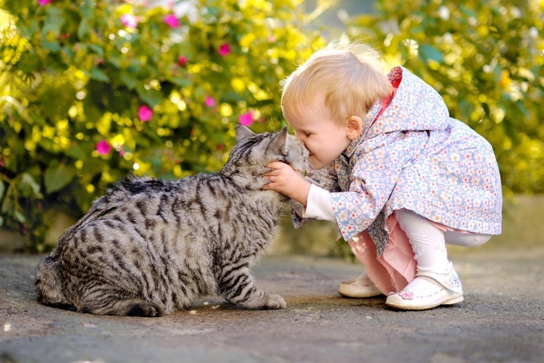 Дети подвержены заражению стригущим лишаем от больных животных