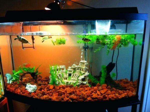 Украшение аквариума с черепахами
