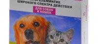 Азинокс для кошек: быстрое и безопасное избавление от гельминтов