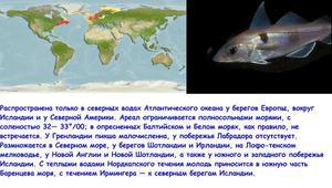где обитает рыба