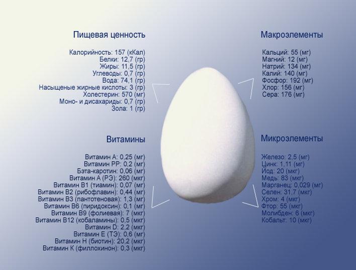 химический состав яиц