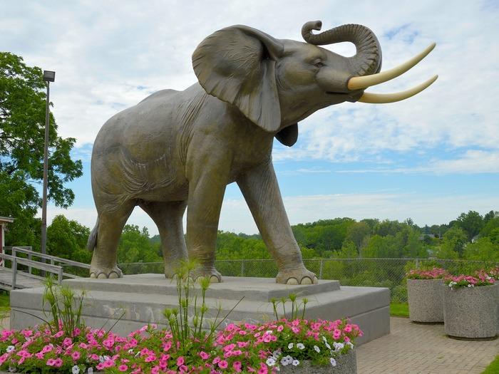 Памятник Джамбо на острове Сент-Томас