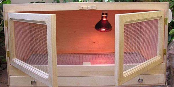 клетка для маленьких цыплят бройлеров