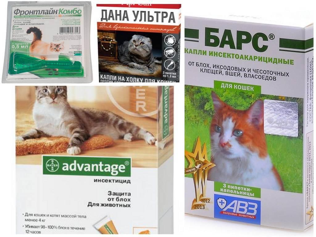 Капли от блох для кошек-1