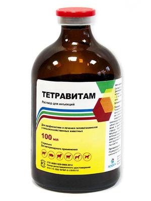 Лечение животного препаратом тетравит