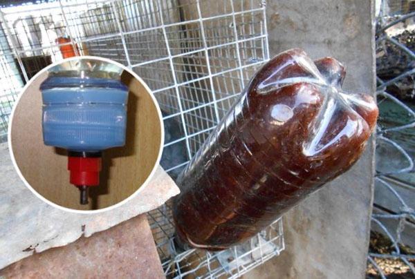 Поилка из пластиковой бутылки