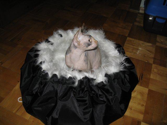 Лежачок-мешочек